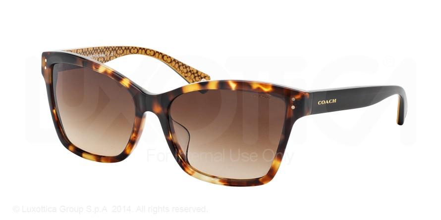COACH Sunglasses Collection COACH Sunglasses HC8107F ...