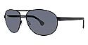 Randy Jackson Sunglasses S917P