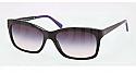 Ralph Lauren Sunglasses RL8093