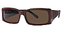 Runway-Sunwear Sunglasses RS584