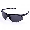 Gargoyles Sunglasses Stalker