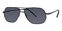 Randy Jackson Sunglasses S909P
