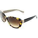 COACH Sunglasses HC8040B