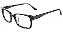 Surface Eyeglasses S312