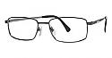 Seiko Classic Series Eyeglasses T 0692