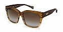 COACH Sunglasses HC8086F