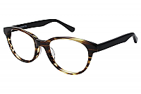 Vision's Eyeglasses 210A