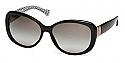 COACH Sunglasses HC8040BF