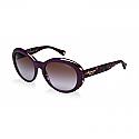 COACH Sunglasses HC8077