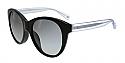 COACH Sunglasses HC8064F