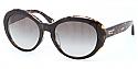 COACH Sunglasses HC8077F