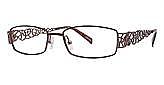 C.O.I. Eyeglasses Boca